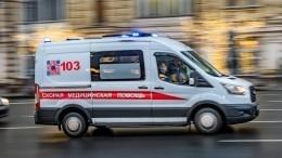 Водитель Lada наскорости сбил двоих пешеходов на«зебре» вПетербурге— страшное видео