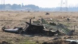 Система ПВО Ирана приняла украинский Boeing-737 закрылатую ракету