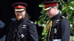 «Отдельные сущности»: Принц Уильям грустит обылой тесной связи сбратом Гарри