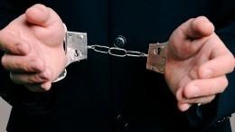 Подозреваемый внападении нажену депутата признал вину