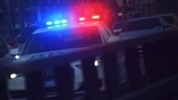 Видео: легковушка наскорости врезалась вполицейскую машину вПетербурге