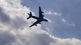 ВЛос-Анджелесе 17 детей пострадали отсброса авиатоплива надетскую площадку
