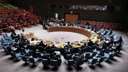 Россия представила ООН доказательства фальсификации химатаки вСирии