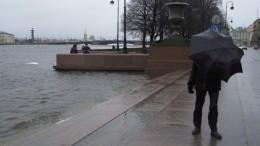 Уровень воды вНеве поднялся почти на1,5 метра из-за сильного ветра
