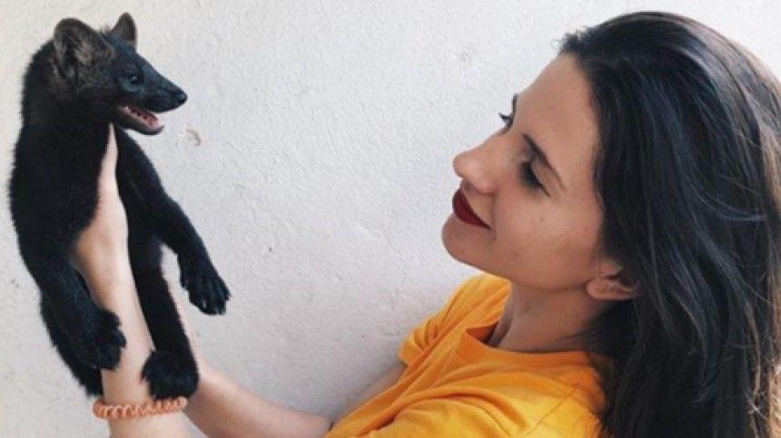 «Яличность, анешуба!»— Честное интервью одомашних соболях