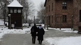 Эксперт: Польша надолго опозорилась попыткой переврать заслуги Красной Армии восвобождении Освенцима