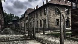 Российские спецслужбы рассекретили уникальные материалы обосвобождении концлагеря Освенцим