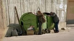 Житель Подмосковья нашел вмусорном контейнере части человеческого тела