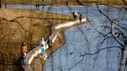 Синоптики пообещали жителям России мощное потепление вконце зимы
