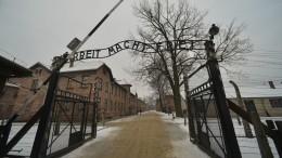 Республики кривых зеркал: сколько евреев вЛитве иЛатвии уничтожили нацисты