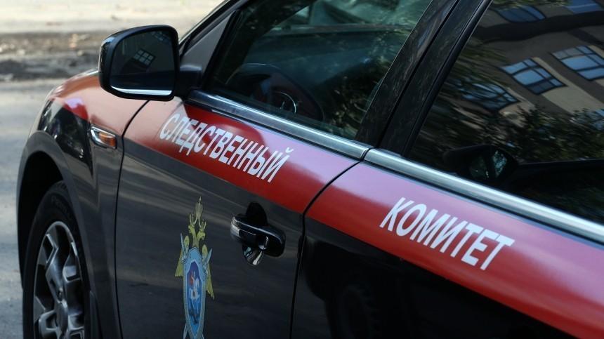 Стали известны подробности омужчине, бросившем детей в«Шереметьево»