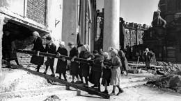 ВПетербурге стартовала акция посбору сведений обучастниках Великой Отечественной войны