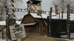 День памяти жертв холокоста: 75 лет назад советские войска освободили Освенцим