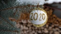 Что россияне пообещали себе вНовом году? Отвечает «Яндекс»