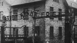 «Двойные стандарты» продемонстрировал Запад вдень годовщины освобождения Освенцима