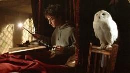 Названы самые большие загадки вселенной Гарри Поттера