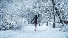 Новые рекорды зимы: наМоскву идет потепление, аАлтай завалило снегом