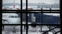 ВUtair прокомментировали экстренную посадку своего самолета во«Внуково»