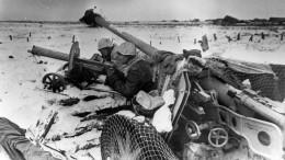 ВЛенобласти создадут «семейный архив» Великой Отечественной войны