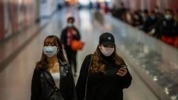ФАС проверит обоснованность повышения цен намедицинские маски ипродукты