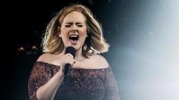 Певица Адель решила завершить концертную деятельность