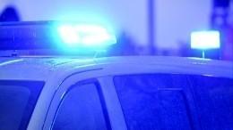 Легковой автомобиль влетел вдерево вНижегородской области— трое погибли