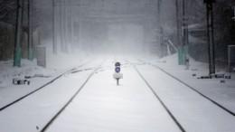 Молодую девушку сбросили сжелезнодорожного моста наАлтае