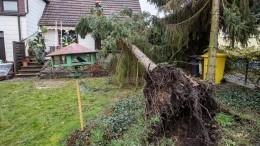Ураган «Сиара» изЕвропы направляется вРоссию