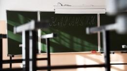 Школы закрыты накарантин вряде регионов России