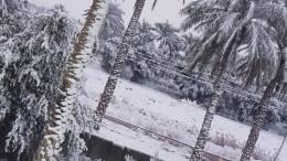 ВБагдаде выпал снег— второй раз за100 лет