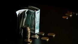 ВФНС планируют ускорить процесс вывода изтени доходов россиян