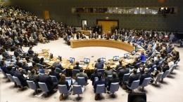 «Сделку века» Трампа обсудили назаседании вСовбезе ООН