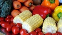 Полезныли самые доступные диеты? Мнение эксперта