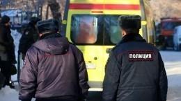 Полиция выясняет обстоятельства ДТП сшестью погибшими под Тамбовом
