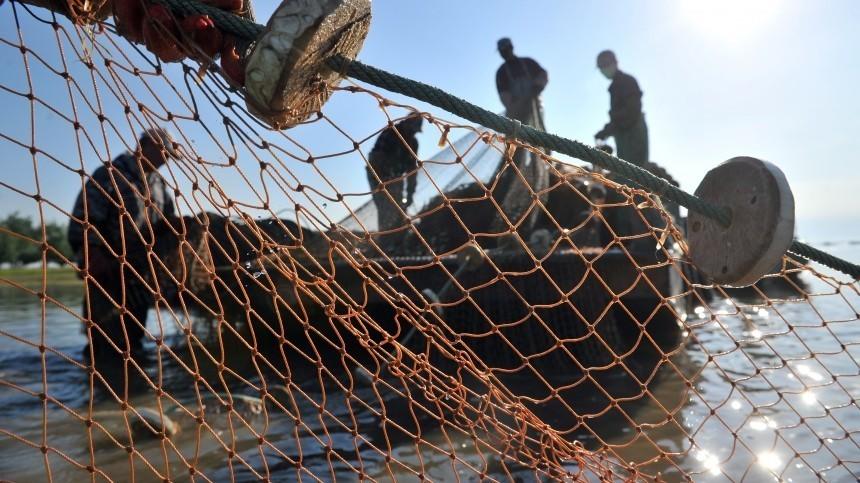Задержанные вАзовском море украинские браконьеры арестованы надесять суток
