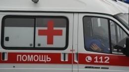 Восьмилетнюю девочку ранили вовремя отстрела собак вКабардино-Балкарии