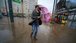 Февральский ливень имощный снегопад стали причинами транспортного коллапса вПетербурге иВладивостоке