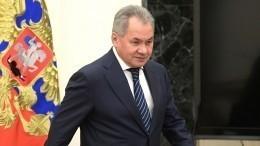 Шойгу: Взаимодействие военных ведомств РФиСербии вышло напринципиально новый уровень