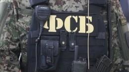 Подготовку двух терактов вобразовательных учреждениях пресекли вКрыму
