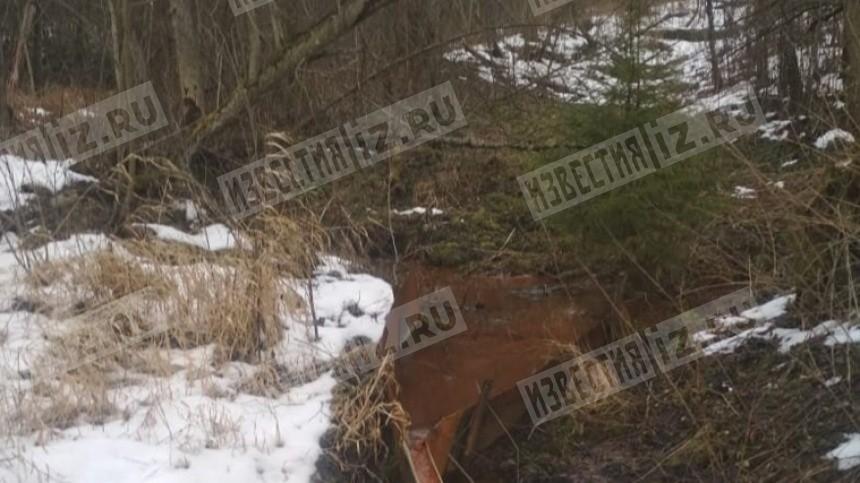 Житель Подмосковья утонул всамодельной купели посреди поля