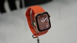 Повар московской гимназии украла уученика часы Apple Watch