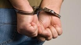Шесть россиян арестованы вДании поподозрению вконтрабанде 100 килограммов кокаина