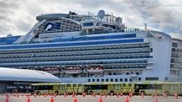 Матвиенко назвала резервацию пассажиров Diamond Princess преступными действиями