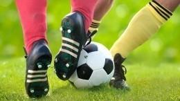 Видео: бразильцы сыграли вфутбол смертвым другом— он«забил» гол
