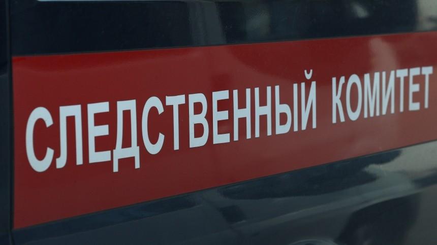 Подросток пытался убить 11-летнего ребенка вМурманской области