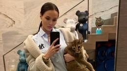 «Боюсь лишний раз вызвать его негодование!»— Решетова показала разъяренного кота Тимати