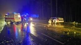 Фото: Двое взрослых погибли идвое детей пострадали встрашном ДТП вЛенобласти