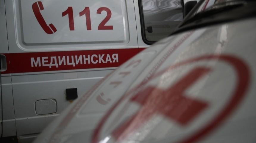 Пешехода насмерть сбили вГатчинском районе Ленинградской области