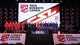 Лига сильных: первый чемпионат побоевому самбо состоялся вСочи