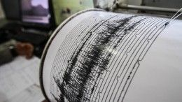 Семь человек погибли врезультате землетрясения награнице Турции иИрана